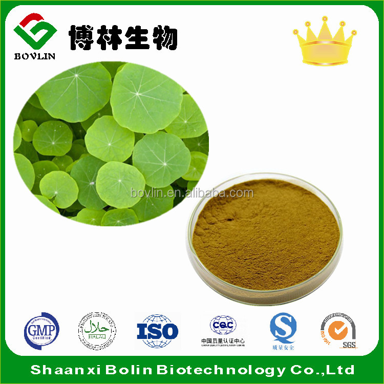 Best Quality Lotus Leaf Extract ,Free Sample For Initial Trial
