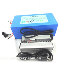 GEB lithium battery for 1000W/3000W/5000w motor lifepo4 48V20Ah battery pack for scooter