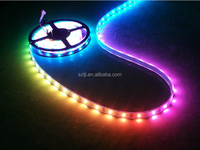 High Quality Magical IC Strip 5050SMD Led Strip RGB 32 Led/m IP68 Waterproof