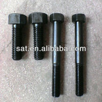 Galvanized Black Bolt and Nut/Fastener