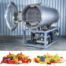 Food Freeze Dryer Production Fruit Lyophilizer