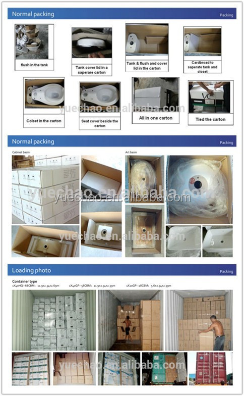 Factory price Siphonic Two Piece toilet