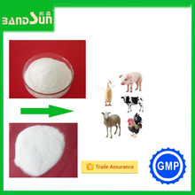pigeon medicine feed additive gmp chemical product sodium butyrate fish antibiotics synthetic drugs vitamins for poultry growth