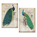 Peacock Canvas Art Prints,Peacock Canvas Wall Art Home Wall Decal Animal Peacock Wall Art