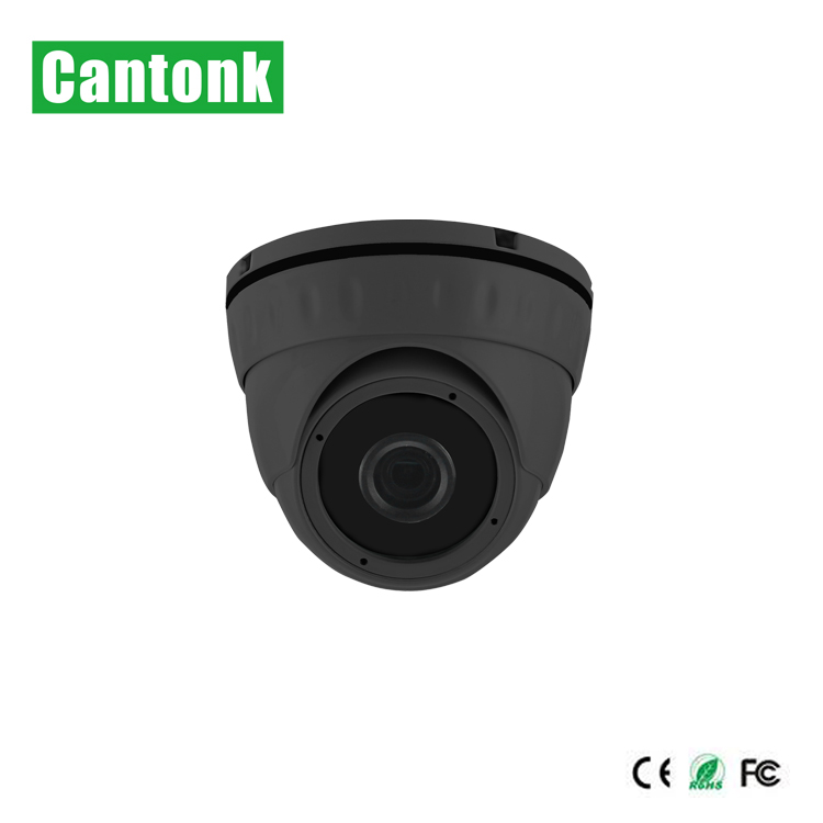 Cantonk Mini Indoor 2MP 3MP 4MP Small Surveillance Cameras With P2p Onvif