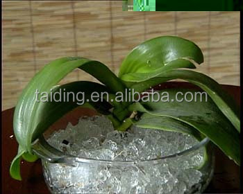 water beads for plants super absorbent polymer