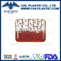 Rectangular plastic food tray manufacturer
