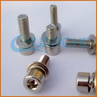 made in china stainless steel screw with internal tooth washer