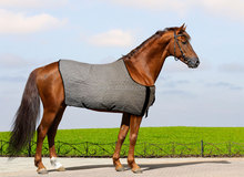 wholesale musle ache relief cooling performance riding saddle vest for horse