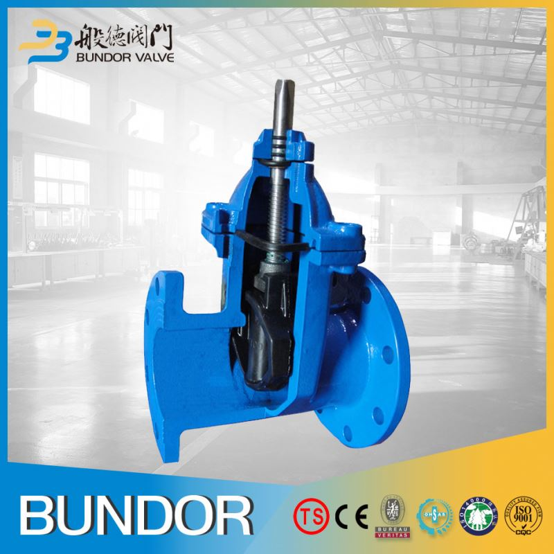 BS gear operated specification rising stem pn16 gate valve dn150