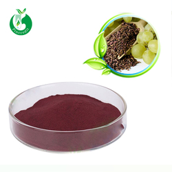 Grape Seed Extract Powder Proanthocyanidin OPC 95% Manufacturer