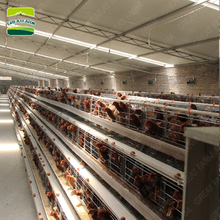 Great farm chicken breeding cage chicken battery cage a type layer chicken cage for bangladesh
