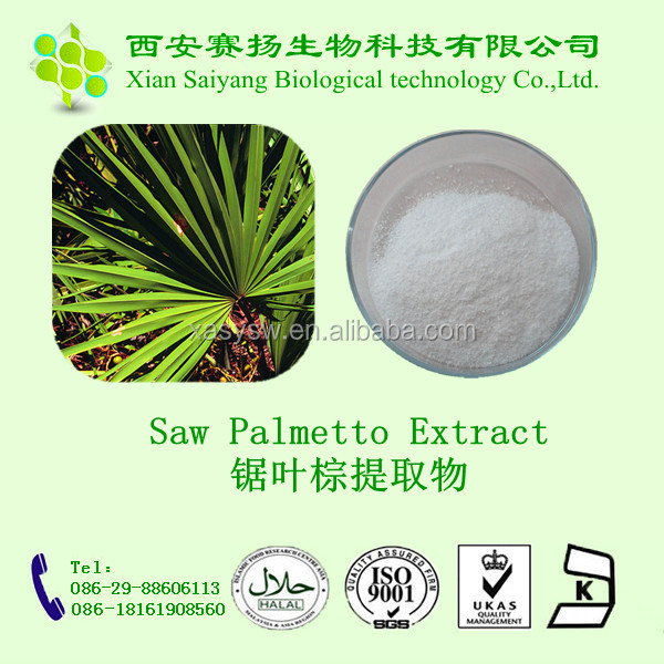 top quality plant extract saw palmetto fruit extract