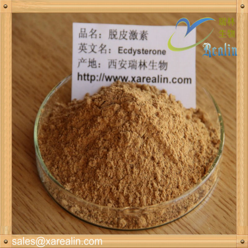 100% Natural HPLC Test 20-Hydroxyecdysterone,Beta Ecdysterone Powder