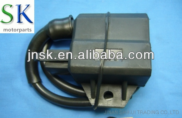 Motorcycle Engine Spare Parts Ignition Coil RG SPORT(Made in China/OEM Quality)