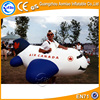 2016 Vivid design inflatable plane/inflatable plane costume sale