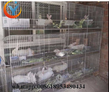 Used Breeding Cage for Rabbits Farming in India for Sale