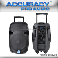 "15"" Cheap Active Trolley Speaker With 12V Rechargeable Battery PML15AMFQ-V2BP-C-BT"