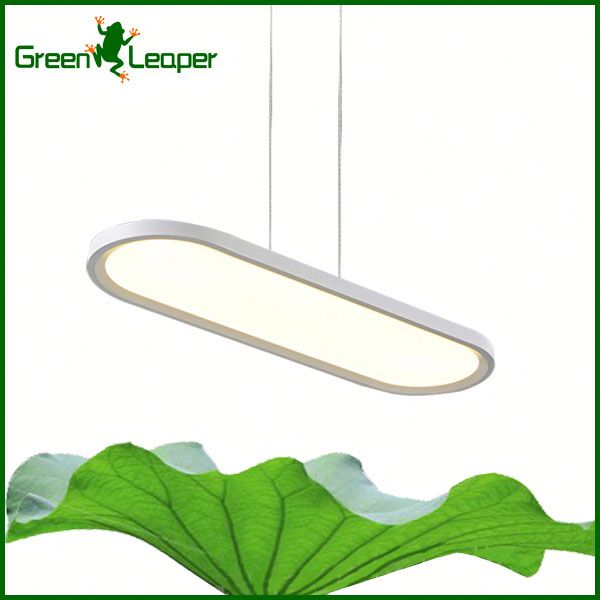 Energy efficient ring decorative led suspended lighting for cake shops