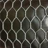 cheap pvc coated chain link fencing