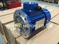 RAL5010 MSL low cost design IEC Standard B5 1.1kW Electric motor
