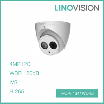 Waterproof 4 Megapixel 50m IR H.265 Eyeball IP Camera Support Built-in Mic