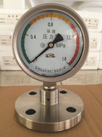 Flange Connection Diaphragm Pressure Gauge
