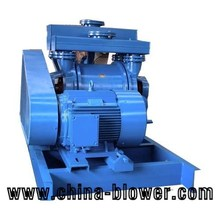 Good quality liquid ring vacuum pump from chinese