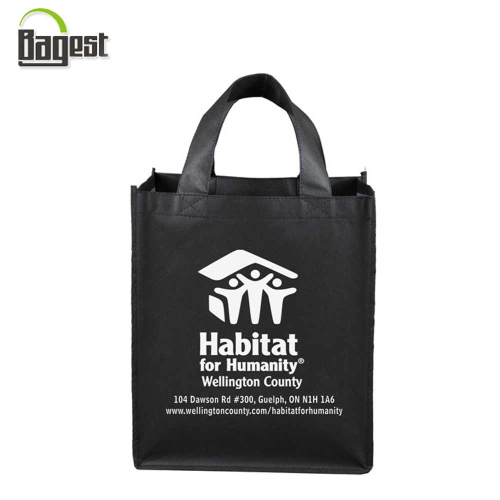 Customized Design Reuseable Gift Package Tote Shopping Bag