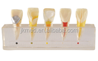 high quality china producto/equipo dental use