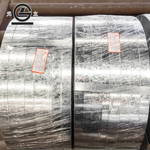 SPCC MS plate/cold rolled steel plate/sheet/coil/crc from China