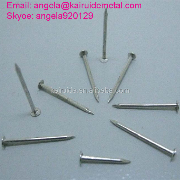 Various Size Smooth Shank Concrete Nails