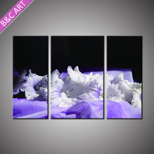 Lastest Picture Design Restaurant Table Decorations Silk Flower Printed Painting