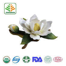 100% Pure Natural magnolia extract,magnolia bark extract