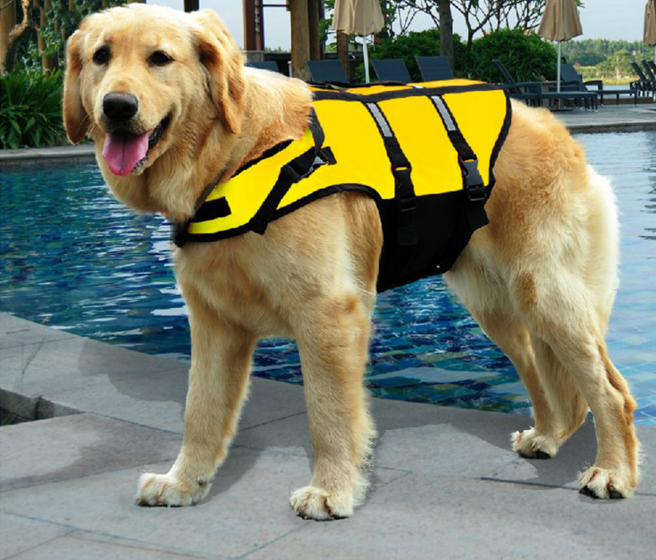 Yellow and Green small middle large size Pet clothes Pet dogs bathing suit dog life jackets