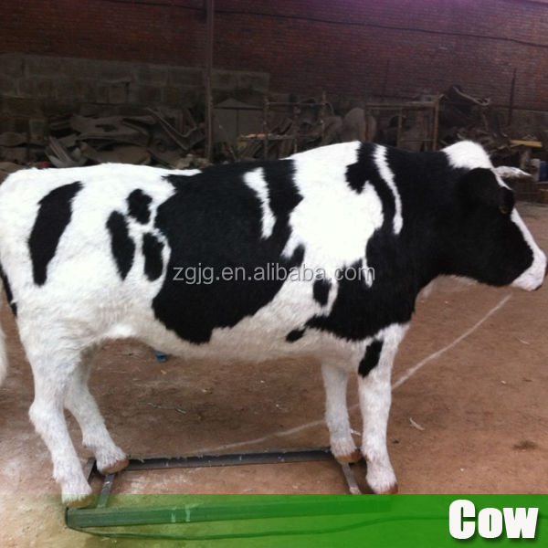 Resin cows life size animatronic cows