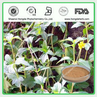 Free Sample, Plant Extract Nettle Extract, Silicone 2%
