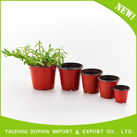 Durable plastic flower pot on hot and cold weather