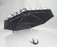 China Manufacturer Color Changing Umbrella In Rain Picture, Japanese Umbrellas