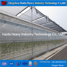 Large Size Multi Span Arch Type Po Film Greenhouse, Hydroponic System