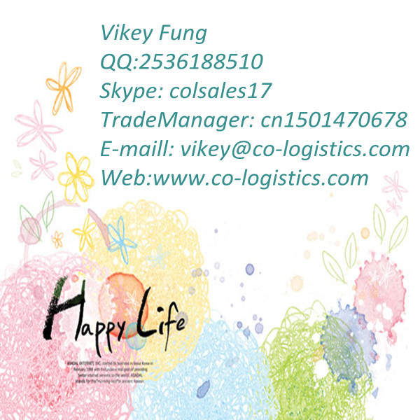 drop shipping from china to usa---Vikey (Skype: colsales17)