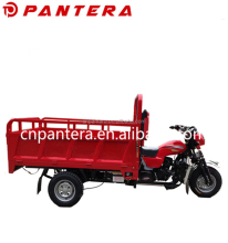 China Durable Cargo Hot in Africa 3 Wheel Electric Trike Motorcycle