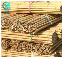 Wholesale bamboo garden fence