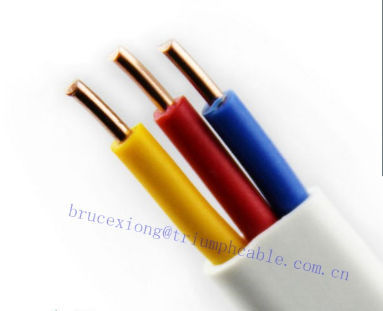 BVVB cable Electrical Wire/Electrical CABLE/Specification size