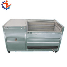 LJ - 1000 automatical stainless steel brush carrot washing peeling attrition polishing machine