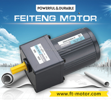 FTG brushless dc gear motor 24v 25w