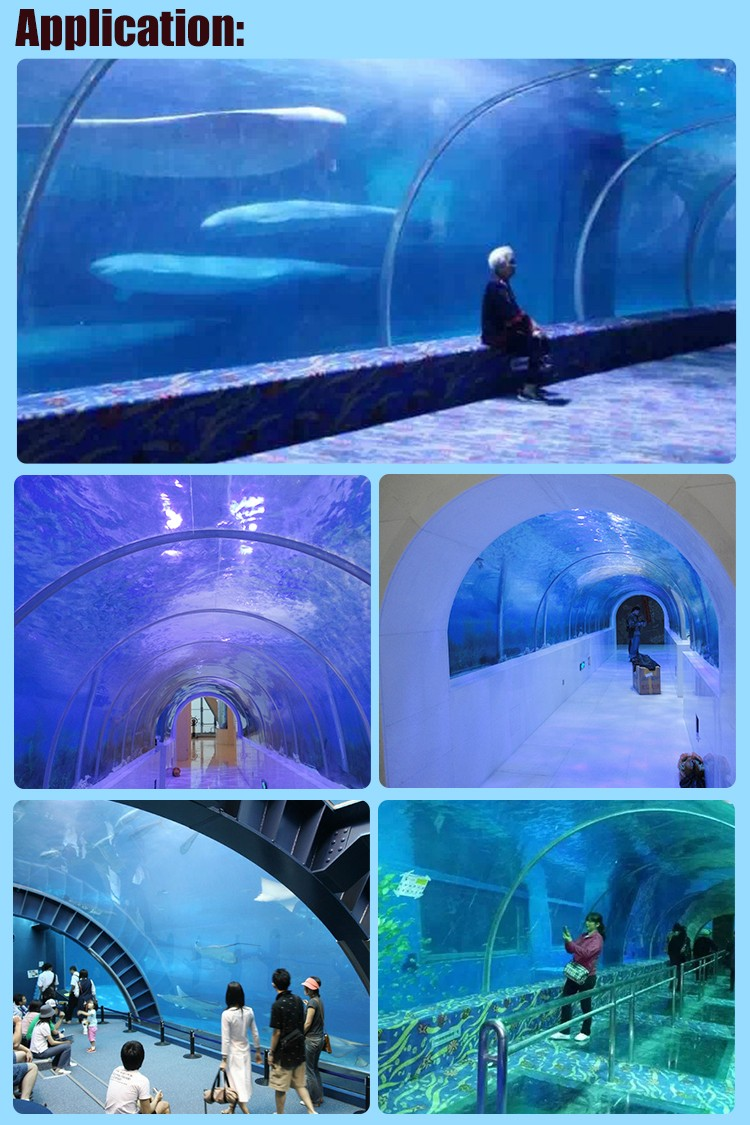 Experienced Factory Acrylic Tunnel Fish Tank Aquarium Tunnel