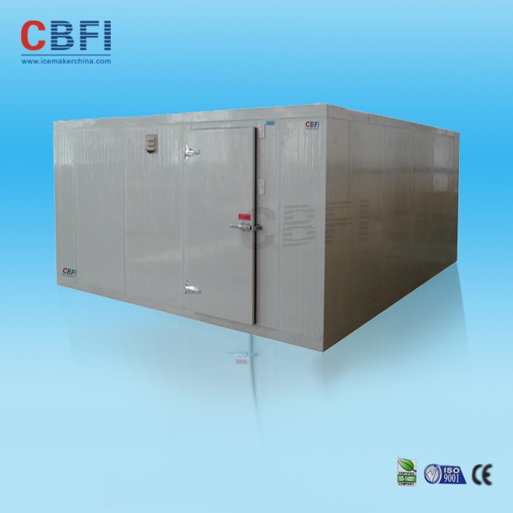 20ft and 40ft container mobile cold room door