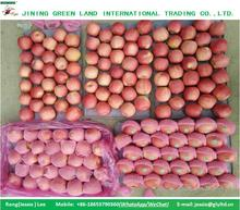 FRUIT APPLE CHINESE APPLE FRESH PINK LADY APPLE TO WORLD MARKET FOR SALE