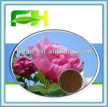Wild Cotton Rose Extract/Hibiscus Extract with Anthocyanins 5%-25%